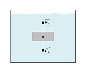 plivanje tela slika2