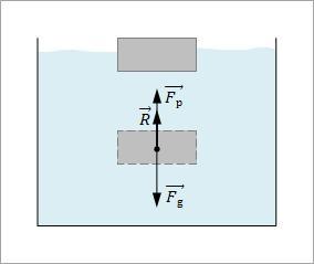 plivanje tela slika3