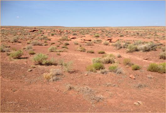 pustinja slika